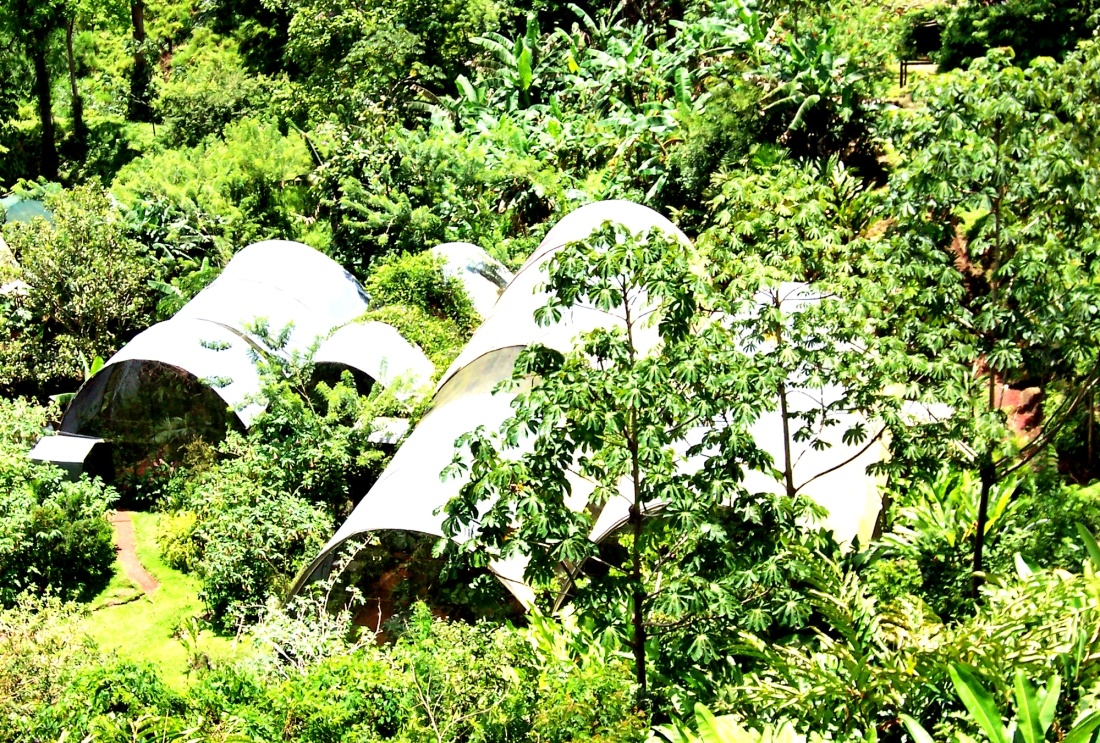 Butterfly Atriums
