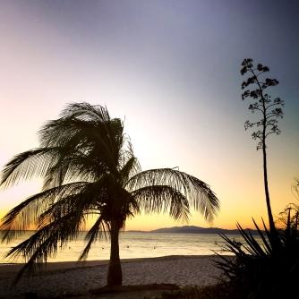 playa cabuyal_sunset and plamtree