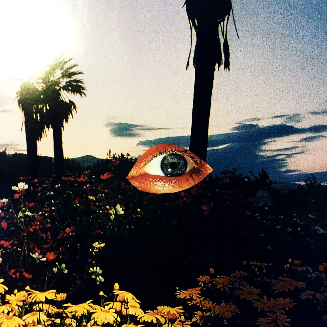 manifesto_collage-eye