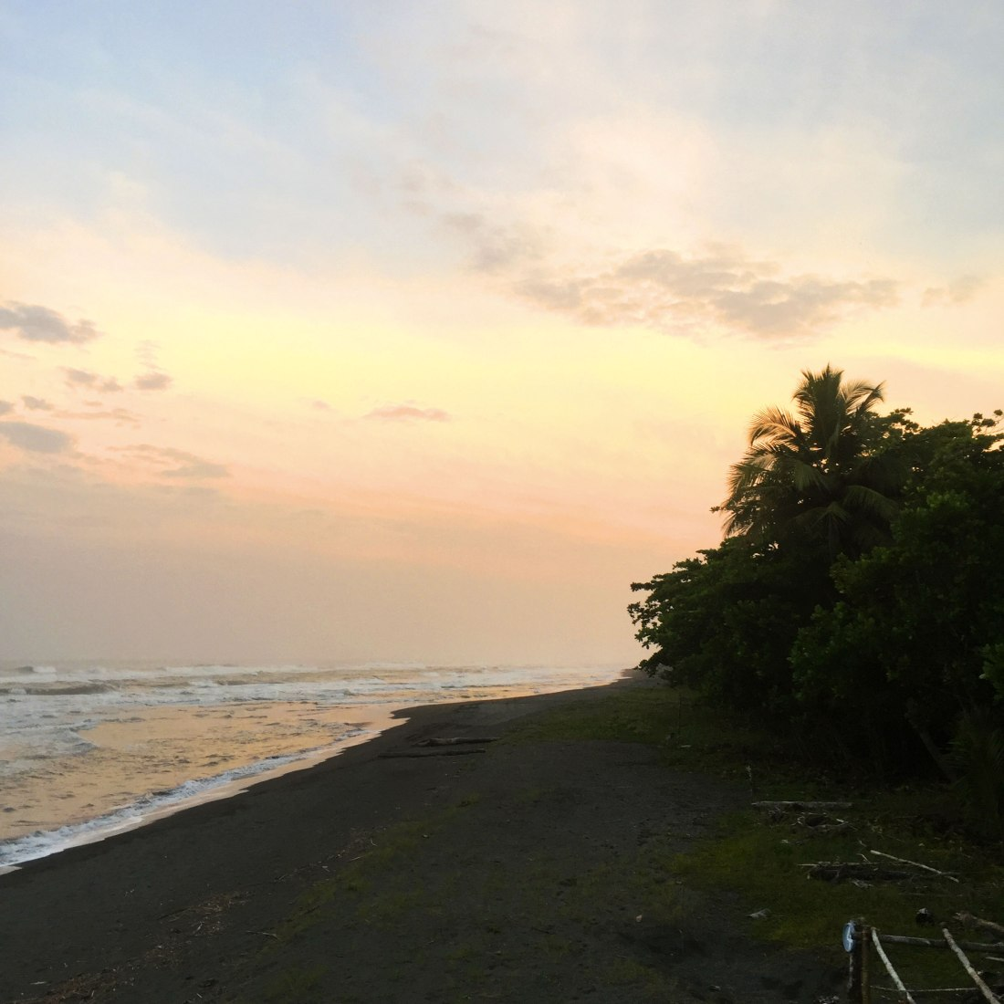 robinson-beach_web.jpg