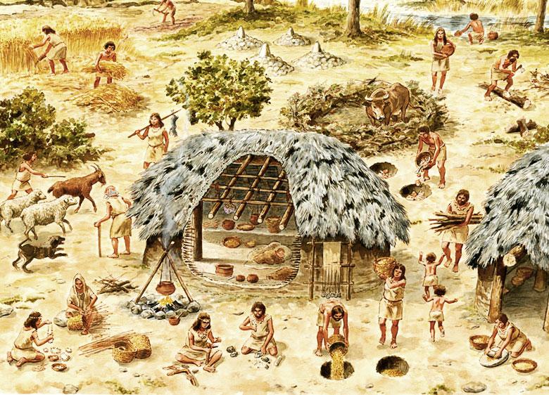 neolithic-society_web