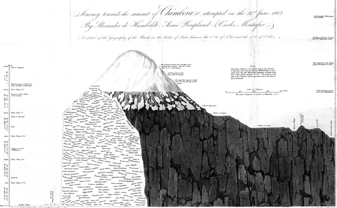 humboldt-profile-chimborazo-1829_webOK