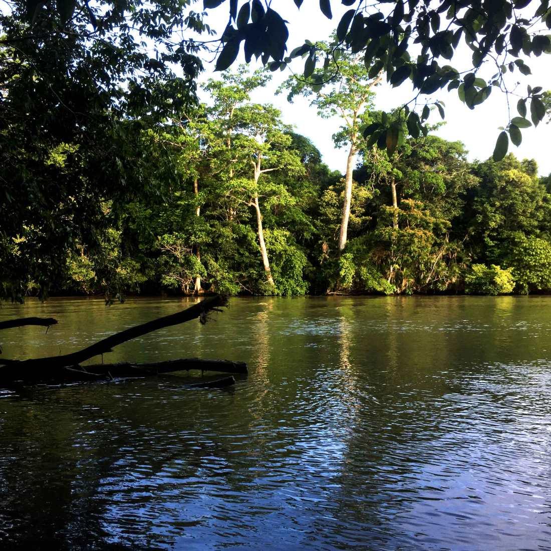 corcovado_crossing_river_web.jpg